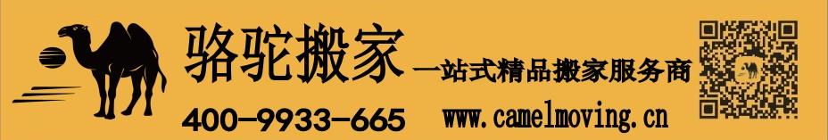 骆驼ballbet贝博网站横幅.jpg